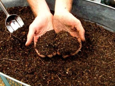 Cómo hacer compost
